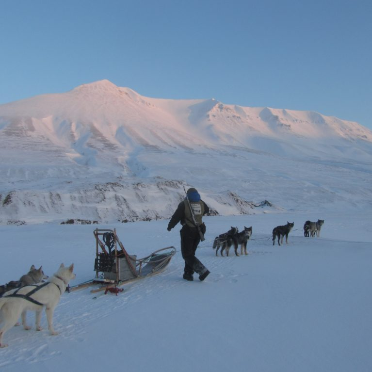 Dogsledding in Spitsbergen