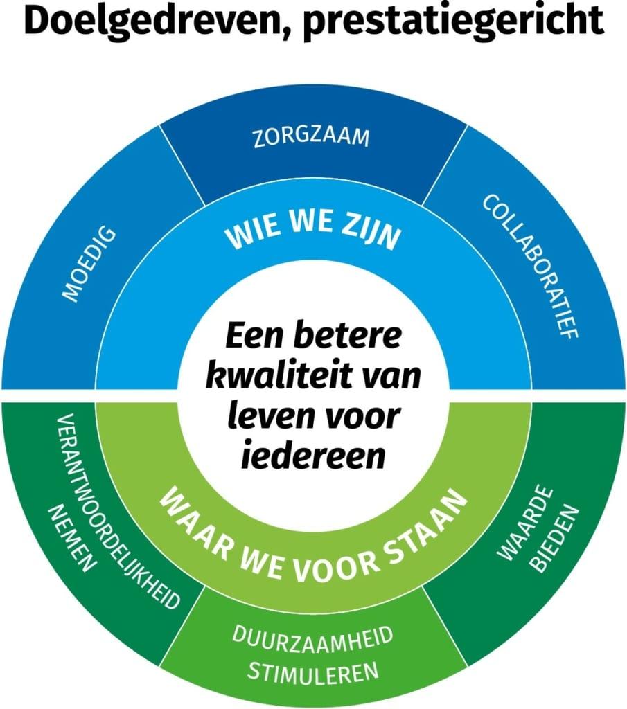 Culture Compass DSM