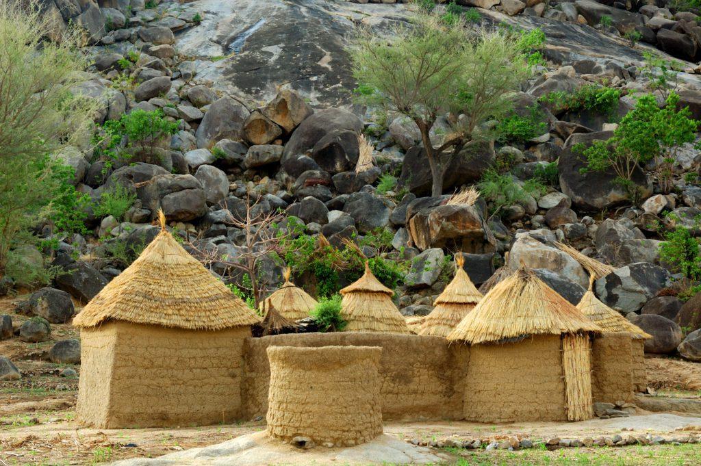Kameroen | Leiderschapslessen uit afval | Green Culture Lab